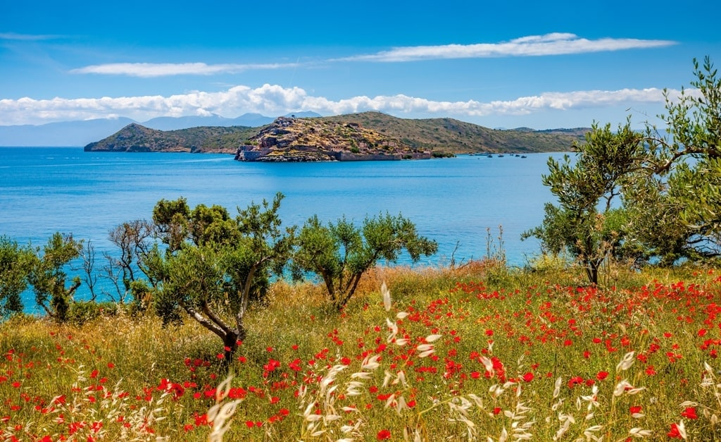 Spring in Crete is amazing - fortress of Spinalonga in the background