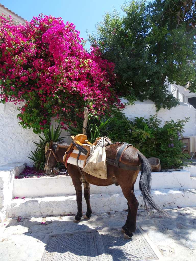 Hydra, Greece - Best Greek islands to visit in May