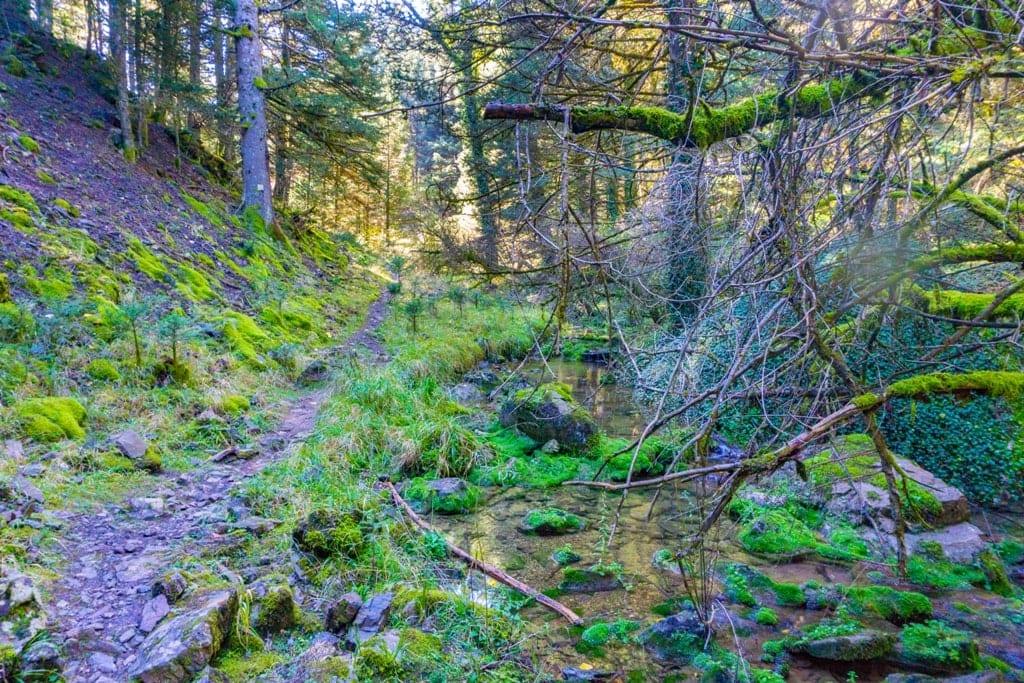 Menalon Trail - Hiking in Greece