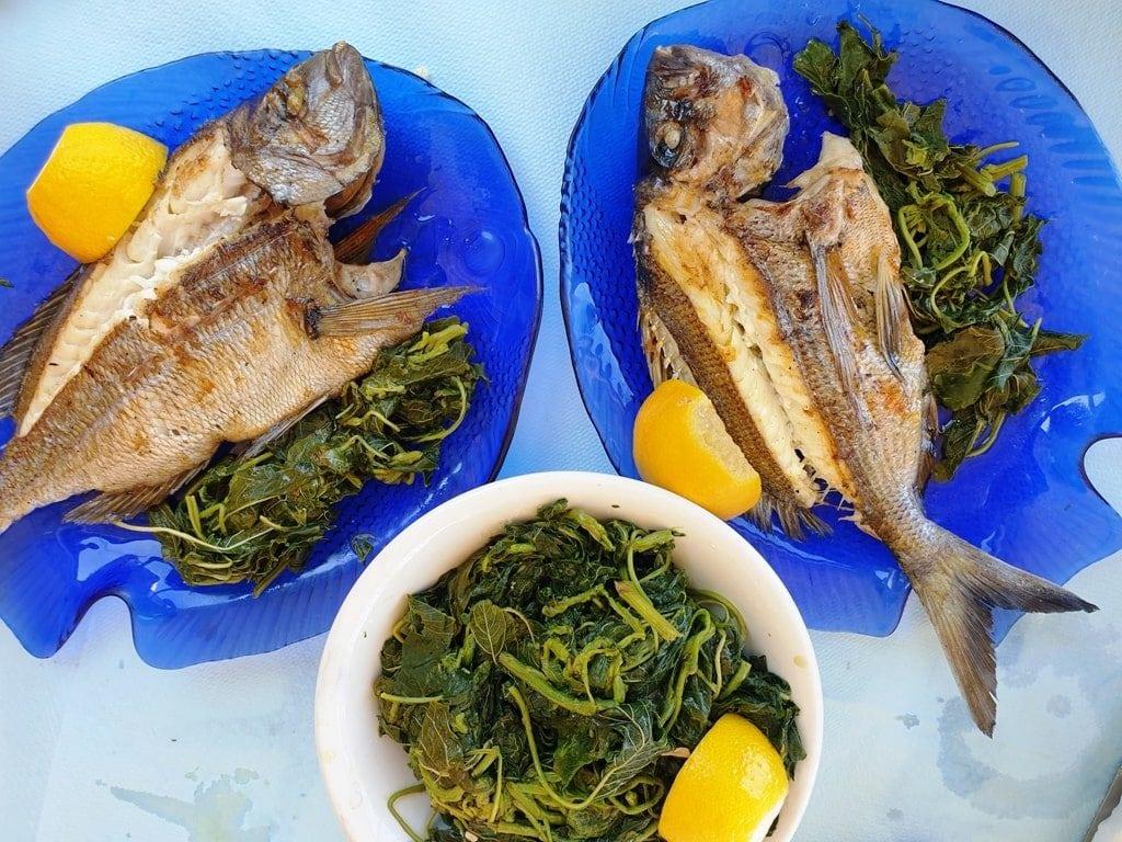 fish - tavernas in Greece