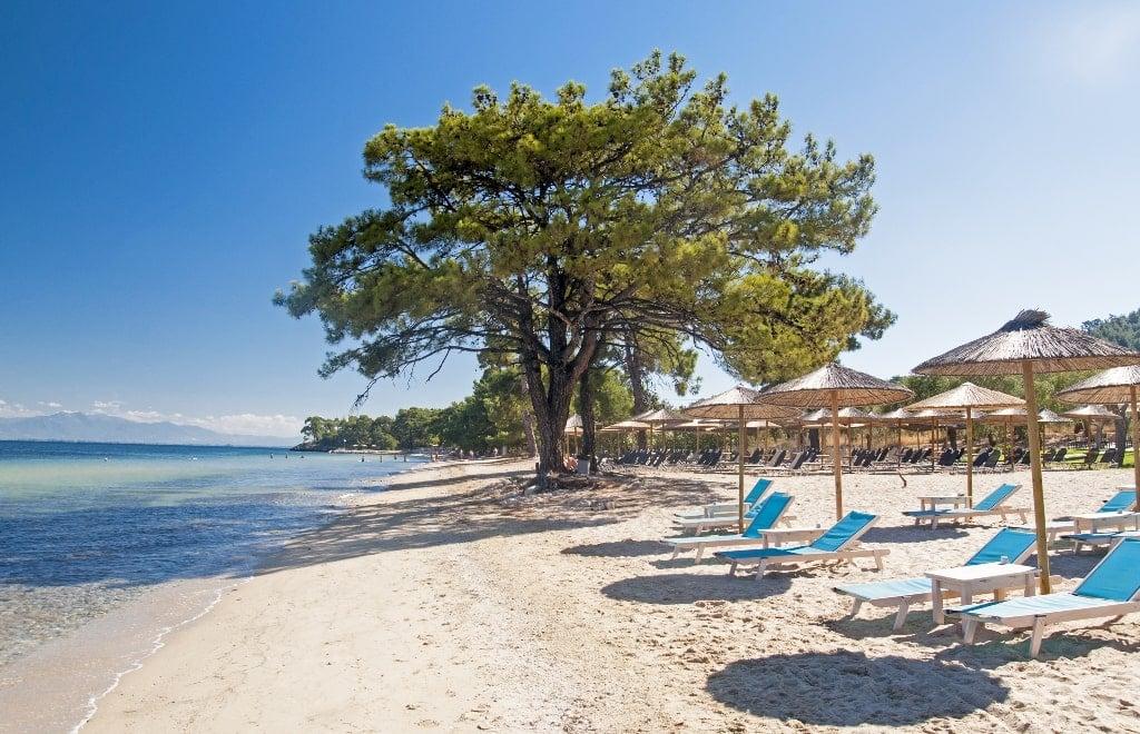 Pachis Beach Thassos best beaches