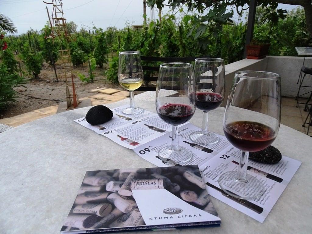 wine tasting in Sigalas Domaine in Santorini