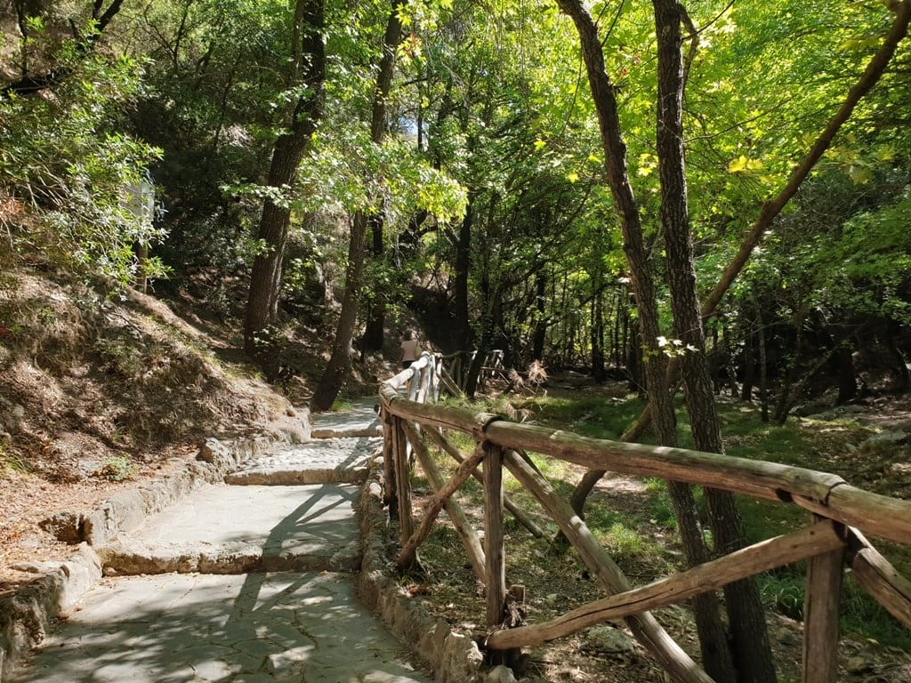 Valley of the Butterflies - Things to do in Rhodes
